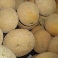 The USA FDA have reported a serious outbreak of Listeria monocytogenes related to cantaloupes melons. So for the authorities have reported that 55 people have been affected and there has been […]